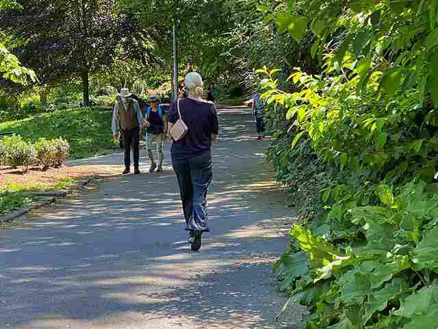 Morningside Park (6)