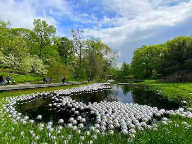 Yayoi Kusama Narcissus Garden