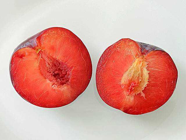 Plumcots (2)